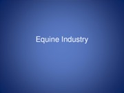 intro_to_equine_powerpoint