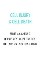 L50 - Cell injury and cell death [2016.10.11].pdf