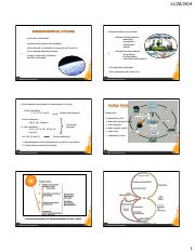Biogeochemical Cycles.pdf