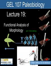 Lecture 19 GEL107 Functional Morphology.pdf
