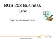 BUS 203 Business Law Topic 3 -  Business Entities