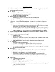 Chapter 4 and 5.1 Notes.docx