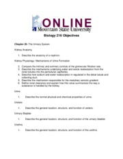 Week 13 Objectives Assignment