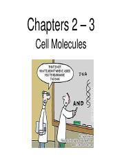 2-3_Cell Molecules
