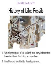 L19_Fossils_notes