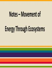 Notes Movement of Energy Through Ecosystems