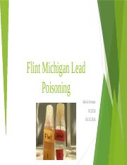 Flint Mitchigan lead water