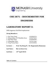 Submission-CHE-2871-Lab-3.docx