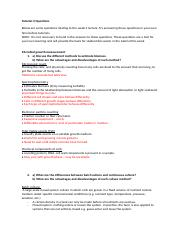 Tutorial 4 Questions.docx