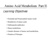 28 - Amino Acid Metabolism, Part 2