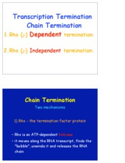 transcription Regulation Extra slides