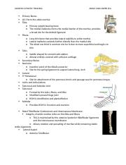 Ankle & Lower Leg.docx
