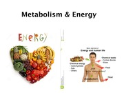 15. Metabolism and Energy
