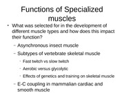 Specialized+functions+of+muscles+Mar+21+v2