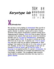 Karyotype lab
