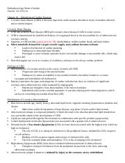 PATH 370 Week 4 Outline  Version 1 0.docx