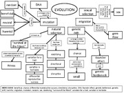 Concept Map About Evolution.Evolution Concept Map Key Am Class Neutral Mutation Harmful Is