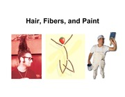 Hairs%20Fibers%20and%20Paint1