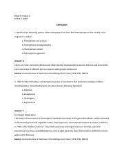 Questions Final  (EDGAR D. NIEVES JR.).docx