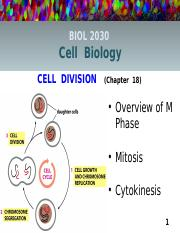 Lecture 11 online (Ch.18) The Cell Division Cycle
