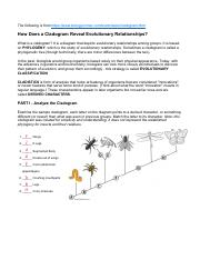 Cladogram practice 2.pdf - The following is from https/www ... on