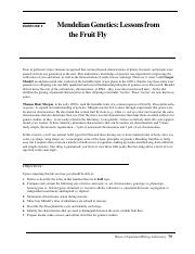 Lab 6 Info Fruit Flies.pdf
