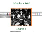 Ch 6 - Muscles at Work