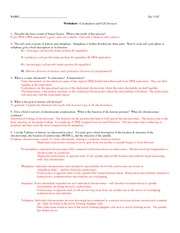 311C cell_division_worksheet+A