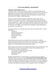 FORMAL_REPORT_INFORMATION (2).doc