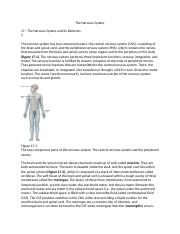 The Nervous System(1)