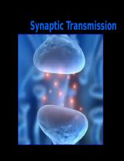 Synaptic Trans.ppt