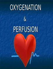 TWC Oxygenation & Perfusion-SV.ppt