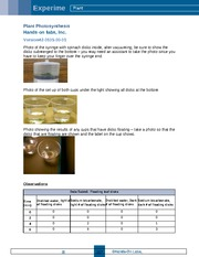Lab Report - Photosynthesis (1)