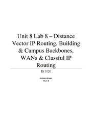Unit 8 Lab 8 – Distance Vector IP Routing, Building & Campus Backbones, WANs & Classful IP Routing