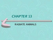 CHAPTER 13 - Radiate Animals - Notes