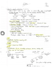 Business Level Strategy Notes