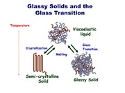 Lecture 18 - Glass Transition