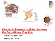 Week 11_Biomechanics_March 24_2014_Compressed_As_Delivered