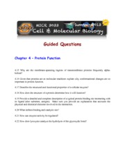Guided Study 4B - Proteins