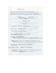 worksheet on directional terms anatomy. Black Bedroom Furniture Sets. Home Design Ideas