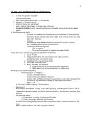 GB1 Lecture 14_ DNA.docx