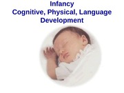 Infancy, Cognitive Development 112