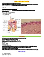 INTEGUMENTARY.doc