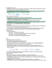 Ch 4-5 Notes