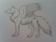 winged-wolf_1_000000037231_1
