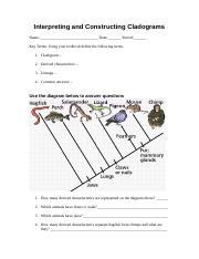 Interpreting and Constructing Cladograms - Interpreting ...