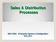 EGN_5620_Enterprise_Sys_SD Process