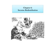 Chapter 6 - Income Redistribution