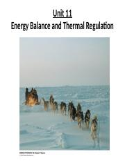 PNB2250_Unit11_Energy Balance and Thermoregulation-1.ppt