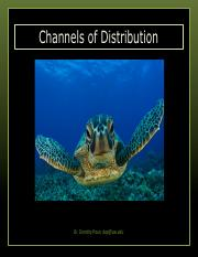 8. Channels of Distribution.pdf